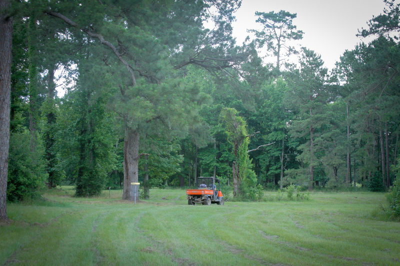Huawni Pines, Camp's disc golf course, is ready for play this weekend.